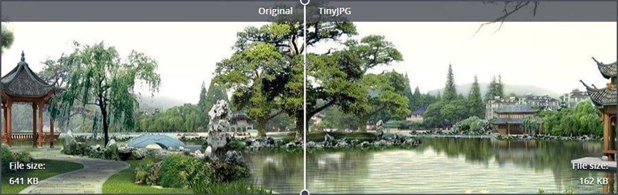 Bild Original und komprimiert im Vergleich bei TinyJPG TinyPNG